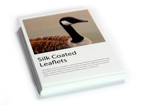 Silk coated flat leafets