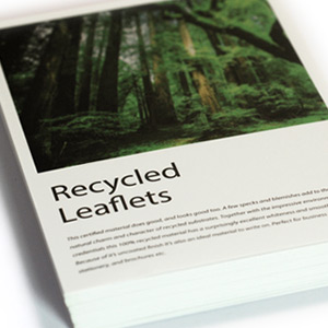 Recycled Uncoated Leaflets