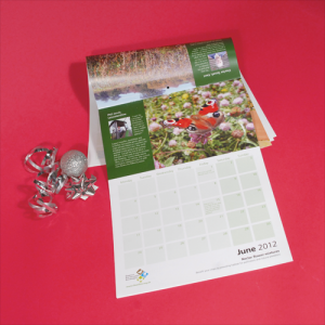Recycled 'Doubler' Fourteen Month Calendars