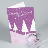 Christmas Cards | Matt Laminated